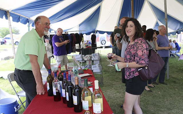 Texas Wine and Rogue Art Festival in Salado March 24-25