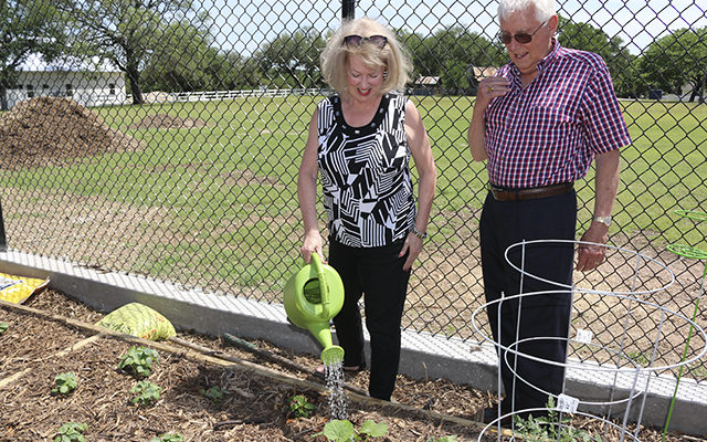Salado Community Garden now accepting members for 42 plots